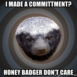Fearless Honeybadger - i made a committment? honey badger don't care