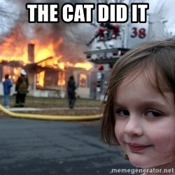Disaster Girl - THE CAT DID IT