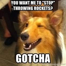 "Wink Dog - you want me to ""stop"" throwing rockets? Gotcha"