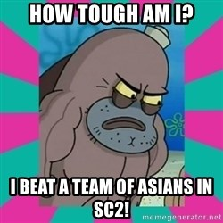 How tough am ii? - how tough am i? i beat a team of asians in sc2!