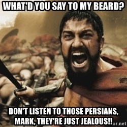leonidas - what'd you say to my beard? don't listen to those persians, mark, they're just jealous!!