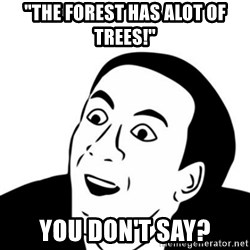 "You_Don't_Say (Nicholas Cage Face) - ""the forest has alot of trees!"" you don't say?"