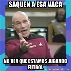 what  the fuck is this shit? - saquen a esa vaca no ven que estamos jugando futbol