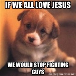 cute puppy - if we all love jesus  we would stop fighting guys