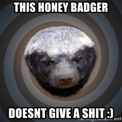 Fearless Honeybadger - This honey badger DoesNt give a shit :)