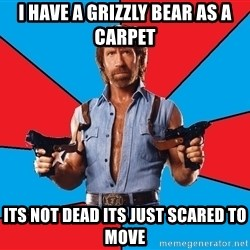 Chuck Norris  - i have a grizzly bear as a carpet its not dead its just scared to move