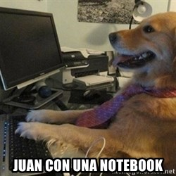 I have no idea what I'm doing - Dog with Tie -  juan con una notebook