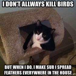 cool cat - I dON'T ALLWAYS KILL BIRDS BUT WHEN I DO, I MAKE SUR I SPREAD FEATHERS EVERYWHERE IN THE HOUSE
