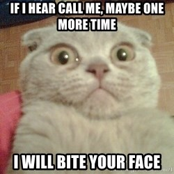 GEEZUS cat - if i hear call me, maybe one more time i will bite your face