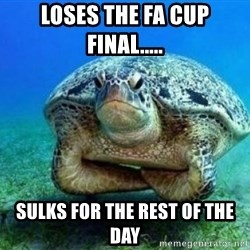 disappointed turtle - loses the fa cup final..... sulks for the rest of the day