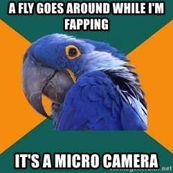 Paranoid Parrot - a fly goes around while i'm fapping it's a micro camera