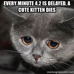 Sadcat - every minute 4.2 is delayed, a cute kitten dies