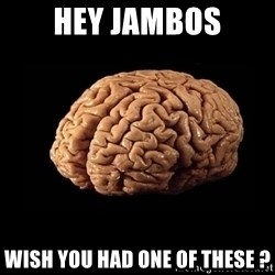 Evil Brain - hey jambos wish you had one of these ?