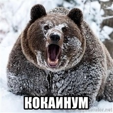 Cocaine Bear - КОКАИНУМ