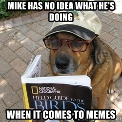Dog Studying - mike has no idea what he's doing when it comes to memes