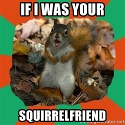 Ill-Informed Squirrel - If i was your squirrelfriend