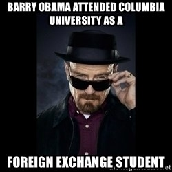Walter White Hat - barry obama attended columbia university as a foreign exchange student
