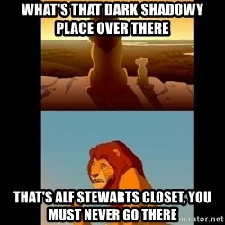 Lion King Shadowy Place - what's that dark shadowy place over there  That's alf stewarts closet, you must never go there
