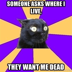 Anxiety Cat - someone asks where i live, they want me dead