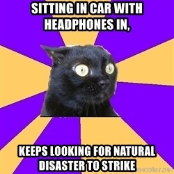 Anxiety Cat - sitting in car with headphones in, keeps looking for natural disaster to strike