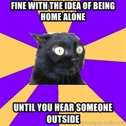 Anxiety Cat - fine with the idea of being home alone until you hear someone outside
