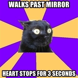 Anxiety Cat - walks past mirror heart stops for 3 seconds