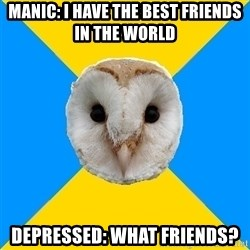 Bipolar Owl - Manic: i have the best friends in the world depressed: what friends?