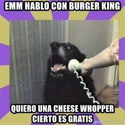 Yes, this is dog! - emm hablo con burger king quiero una cheese whopper cierto es gratis