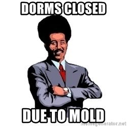 Pool's closed - dorms closed due to mold