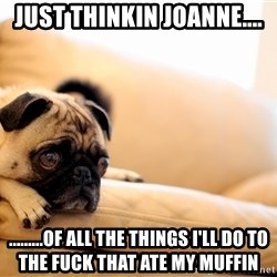 Sorrowful Pug - just thinkin joanne.... .........of all the things i'll do to the fuck that ate my muffin