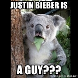 Koala can't believe it - Justin bieber is A guy???