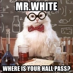 Science Cat - Mr.white Where is your hall pass?