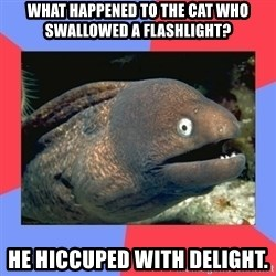 Bad Joke Eels - What happened to the cat who swallowed a flashlight? He hiccuped with delight.