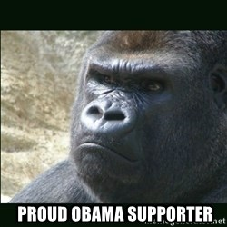 Rustled Jimmies -  proud obama supporter