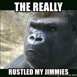 Rustled Jimmies - The really  Rustled my jimmies