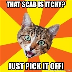 Bad Advice Cat - That scab is itchy? just pick it off!