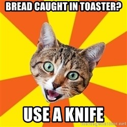 Bad Advice Cat - Bread caught in toaster? Use a knife