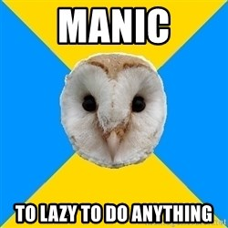 Bipolar Owl - manic to lazy to do anything