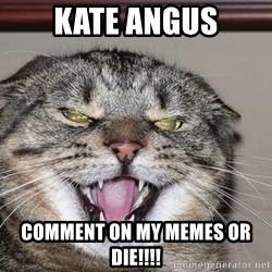 Angry Cat - KATE ANGUS COMMENT ON MY MEMES OR DIE!!!!
