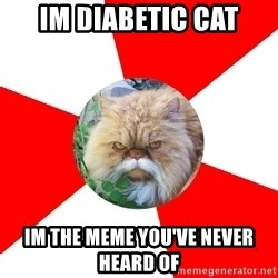 Diabetic Cat - Im diabetic cat im the meme you've never heard of