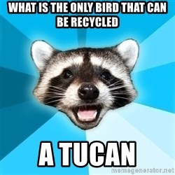 Lame Pun Coon - what is the only bird that can be recycled a tucan