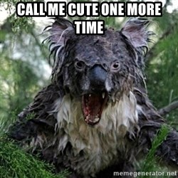 Wet Koala - Call me cute one more time