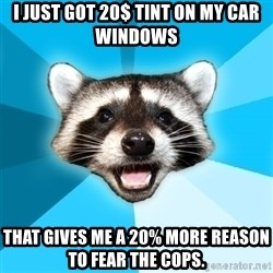 Lame Pun Coon - i just got 20$ tint on my car windows  that gives me a 20% more reason to fear the cops.