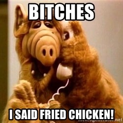 Inappropriate Alf - bitches i said fried chicken!