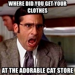 brick tamland - Where did you get your clothes At the adorable cat store