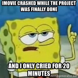 I only cried for 20 minute - imovie crashed while the project was finally done and i only cried for 20 minutes