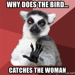 Chill Out Lemur - why does the bird... catches the woman