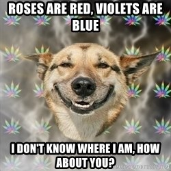 Stoner Dog - roses are red, violets are blue i don't know where i am, how about you?