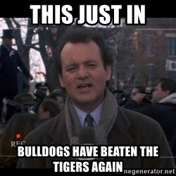 groundhog day - this just in bulldogs have beaten the tigers again