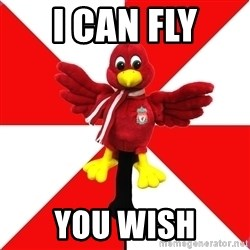 Liverpool Problems - I CAN FLY YOU WISH